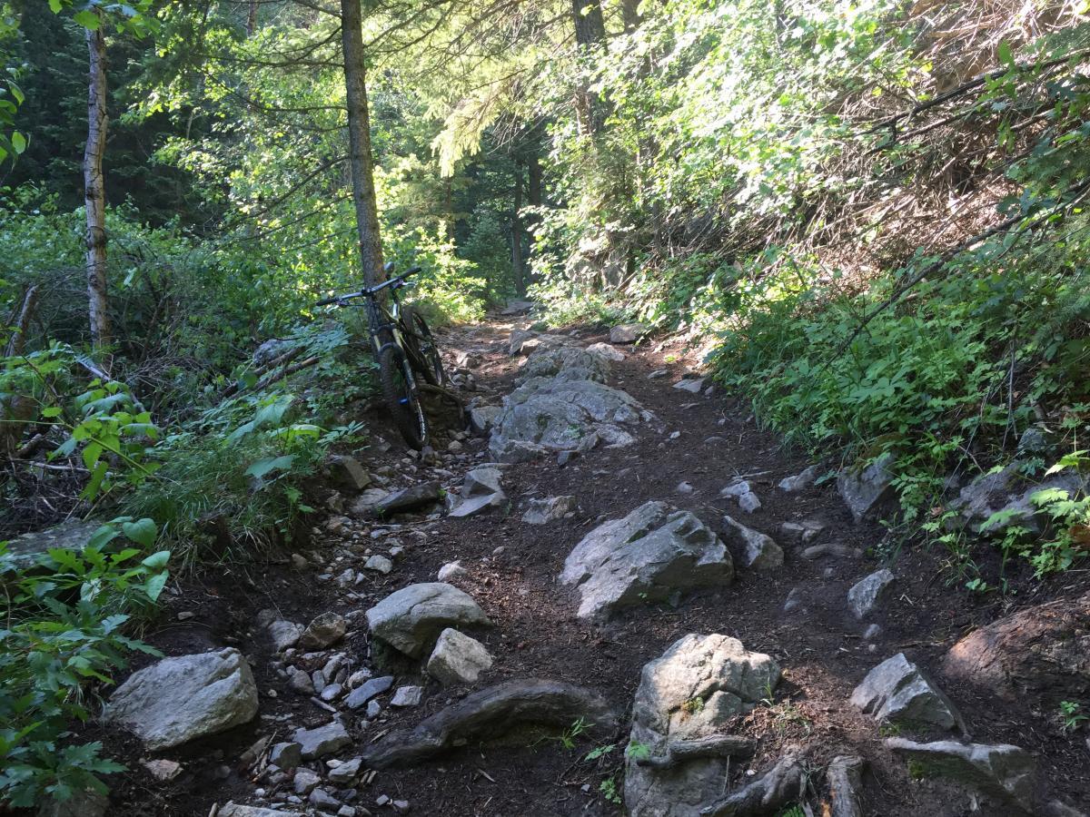 Indian Creek Loop